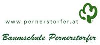 Pernerstorfer Logo